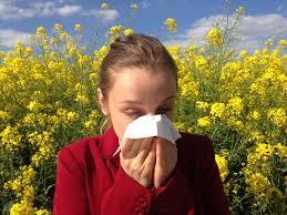 La alergia ya está aquí….